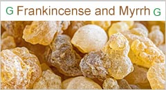 Guul Group Somaliland Investment Frankincense and Myrrh